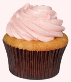 Pink Dog Bakery cupcakes
