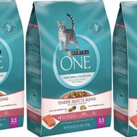 Purina ONE Dry Cat Food