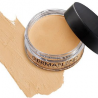 Dermablend Professional Foundation