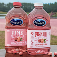 Target: Ocean Spray Pink Cranberry Juice – Only $.44